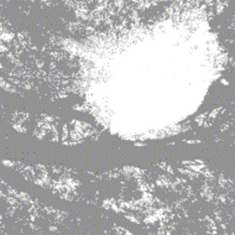 Comets On Fire/Field Recordings From The Sun (Rmt)
