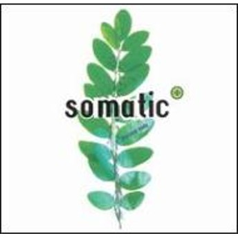 Somatic/New Body