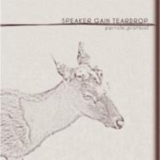 speaker gain teardrop/Particle Protocol
