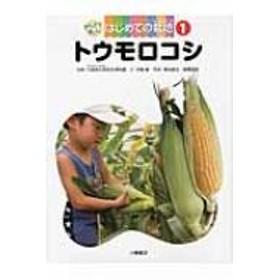 東京学芸大学附属小金井小学校/1トウモロコシ かんさつ名人 はじめての栽培