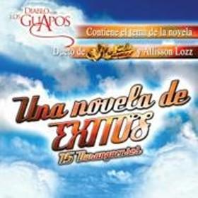 Various/Una Novela De Exitos: 15 Duranguenses