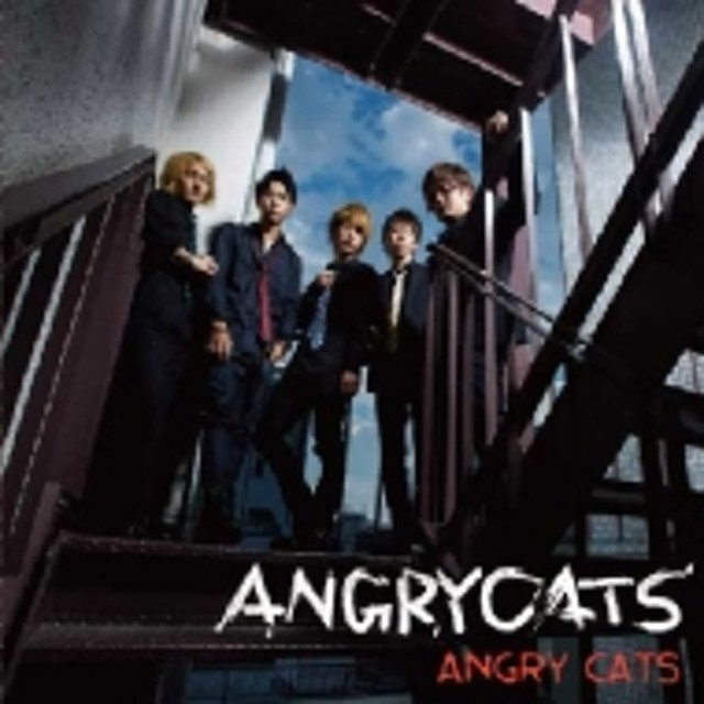 Angry Cats/Angry Cats 通常盤1 -cool
