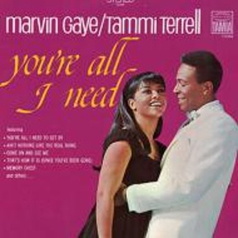 Marvin Gaye / Tammi Terrell/You're All I Need
