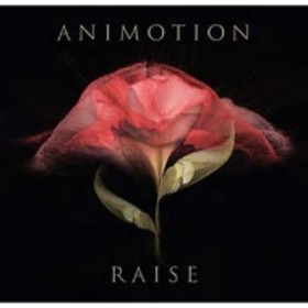 Animotion/Raise Your Expectations