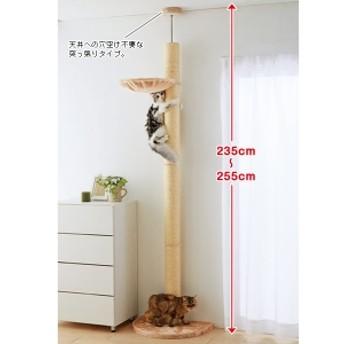 おうちで木登りタワー (突っ張り型) シングル