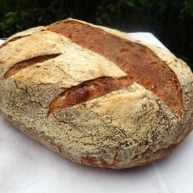 石窯天然酵母パン コンプレ30