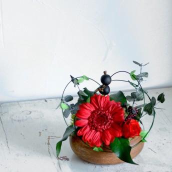 木のぬくもり 真っ赤なガーベラとバラのアレンジ ナチュラル プリザーブドフラワー トピアリー クリスマス 還暦祝い