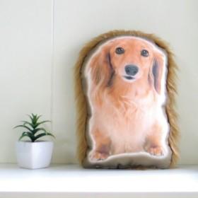 犬 猫 ペット ダックス クッション ぬいぐるみ メモリアル プレゼント オーダーメイド 画像 写真 名前 フサフサp