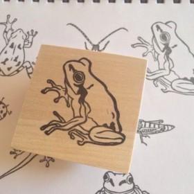 リアルな両生類シリーズ カエルはんこ(1)