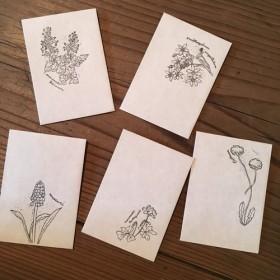 野の花のぽち袋5枚セットB