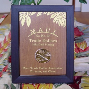Hawaii-Maui Coin Disply3