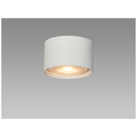 NEC LED天井照明 LED小型ダウンシーリングライト SXM-LG531714L-H 電球色
