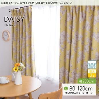 窓を飾るカーテンシリーズ ナチュラル DAISY(デイジー)幅200cm×丈80 〜120cm(1枚 ※5cm刻み) 遮光2級 形態安定(代引不可)(B)