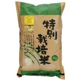 平成30年度産 北海道特別栽培米 芦別ななつぼし ( 5kg )