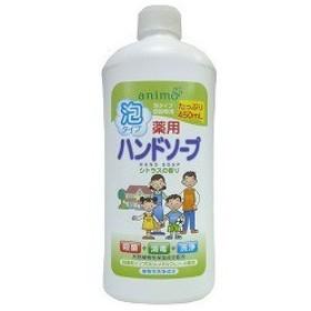 薬用 ハンドソープ 泡タイプ シトラス 詰替用ボトル ( 450mL )