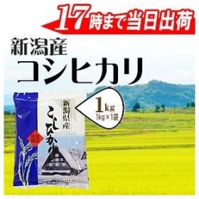 お米1kg 新潟産コシヒカリ1kg 平成30年産