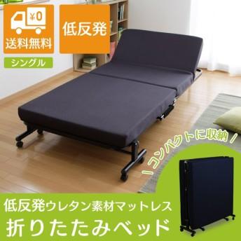 ベッド 折りたたみベッド 折り畳みベッド 折り畳み式ベッド シングル OTB-KR アイリスオーヤマ 高反発 リクライニング 収納コンパクト 折り畳み