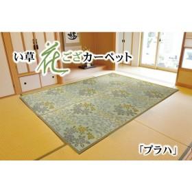 袋織 い草花ござ カーペット 『プラハ』 江戸間2畳(約174×174cm)