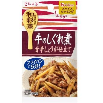 スパイスクッキング和彩菜 牛のしぐれ煮甘辛しょうが仕立て 6.5g×2袋 代引不可
