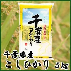 お米 30年産 5キロ 千葉県産 コシヒカリ こしひかり 5kg 米 ごはん うるち米 精白米