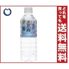 【送料無料】奥長良川名水 高賀の森水 500mlペットボトル×24本入