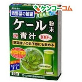 山本漢方 ケール粉末 100% ( 85g )/ 山本漢方 青汁