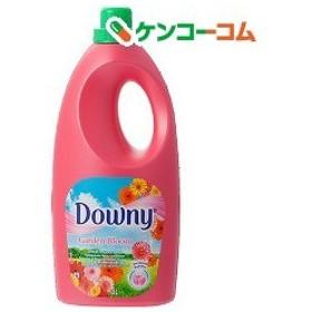 ベトナムダウニー ガーデンブルーム ( 1.8L )/ ダウニー(Downy)
