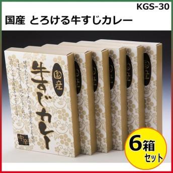 国産 とろける牛すじカレー 180g×6箱セット KGS-30
