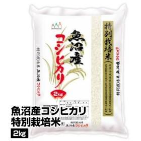 m_元年新米 白米 魚沼産 コシヒカリ特別栽培米 2kg_4995856610021_1