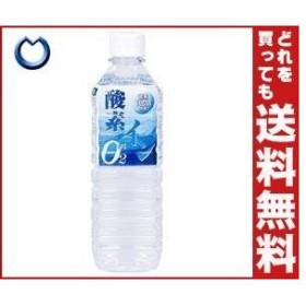 【送料無料】奥長良川名水 酸素イン 500mlペットボトル×24本入