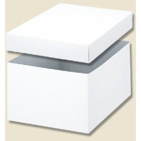 お取り寄せ バラエティボックス 0-11-100 かぶせ蓋式 10枚 10枚