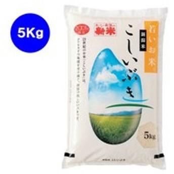 藤井商店/新潟県産 こしいぶき 5kg