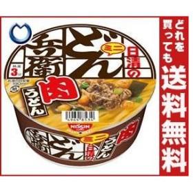 送料無料 日清食品 日清のどん兵衛 肉うどんミニ 40g×24(12×2)個入