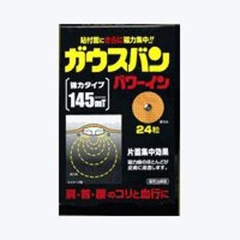 ガウスバンMAX 200 24粒入 (ゆうパケット配送対象)