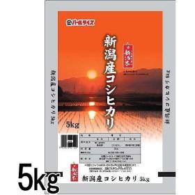 米 新潟県産 しらゆき米 コシヒカリ 5kg