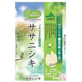 お米 5kg 人気 宮城県古川産 JAふるかわ産 ササニシキ
