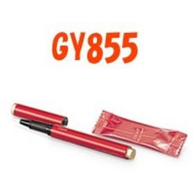 資生堂 インウイ ジ アイライナー GY855 (リキッドアイライナー/アイライナー リキッド/shiseido/アイライン) - 定形外送料無料 -wp