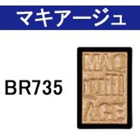 アイカラー N ( パウダー ) BR735 資生堂 マキアージュ - 定形外送料無料 -wp