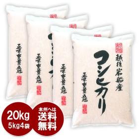 コシヒカリ 20kg 岩船産 - こしひかり お米 5kg x4袋 新潟産 送料無料 平成30年産