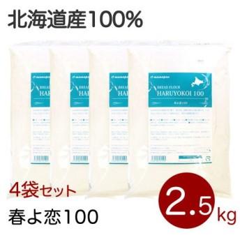 セット 強力粉 春よ恋100% 北海道産パン用小麦粉 2.5kg×4