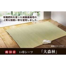 国産上質い草「環良草」使用 い草のシーツ(寝ござ) 『大森林』 セミダブル 約120x200cm