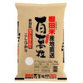 新潟県加茂七谷地区棚田 コシヒカリ 5kg 2個セット