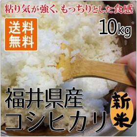 福井精米 令和元年 福井県産 新米 コシヒカリ 精米 白米 10kg