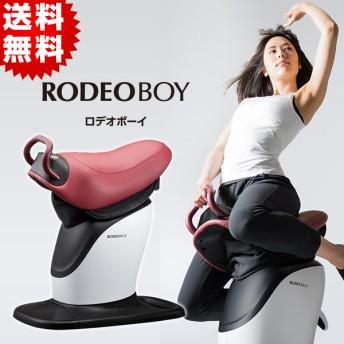 【特別価格】乗馬フィットネスマシン「ロデオボーイ」/FD-017(送料無料)