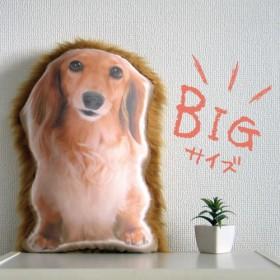 ビッグサイズ 犬 猫 ペット ダックス クッション ぬいぐるみ メモリアル プレゼント オーダーメイド 写真 フサp