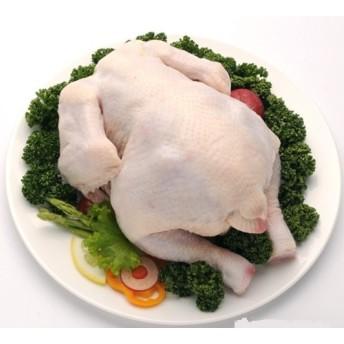 韓サイ冷凍鶏肉★ 丸鶏(グリラ) 冷凍鶏 約800g