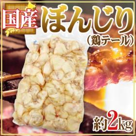 国産 ぼんじり(鶏テール) 約2kg