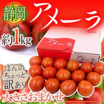 静岡県 高糖度フルーツトマト アメーラ 大きさおまかせ 約1kg ほんのちょっと訳あり 化粧箱入り【予約 入荷次第発送】