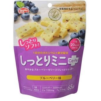 ハマダコンフェクト しっとりミニCa Fe ブルーベリー味 65g フード 食事法 バランス栄養食ハマダコンフェクト