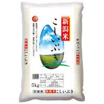 【精白米】新潟県産こしいぶき 5kg 平成30年産